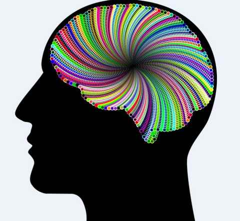 loi d'attractio et image mentale