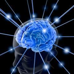 Si vous cherchez à développer votre mémoire, il est essentiel d'en avoir le mode d'emploi