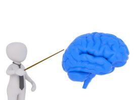 comment entraîner son cerveau