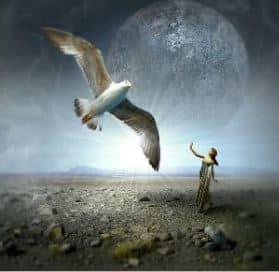 liberté de choisir sa vie et sa passion