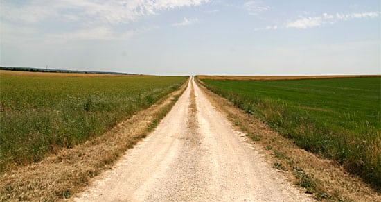Trouver sa voie Chercher et trouver sa voie est une condition du bonheur et de la réussite personnelle