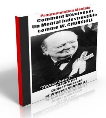 Le secret de la perseverance de W. Churchill